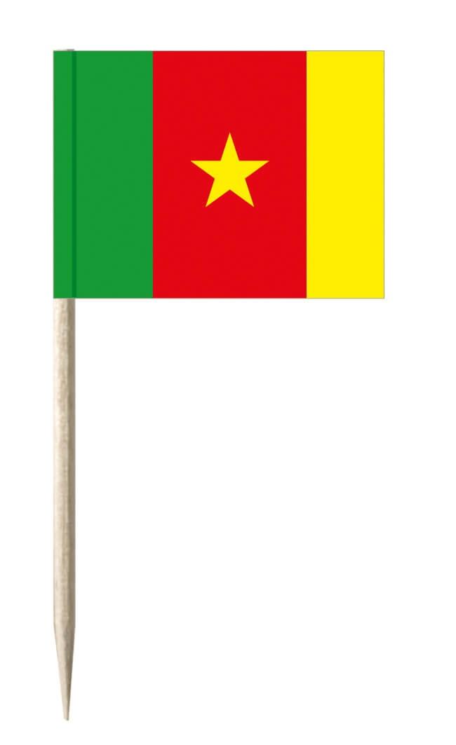 Kamerun Käsepicker oder Holzpicker und Minifähnchen für den Events