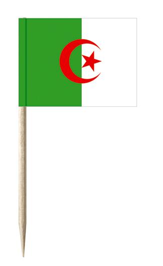 Algerien Minifahnen, minifahnen kostprobenpicker, Käsepicker, Holz-picker, Minifahnen, käsepicker ideen, party picker holz,
